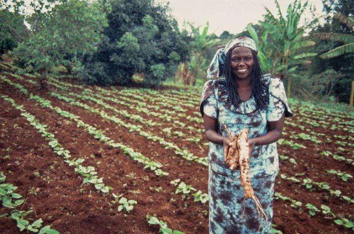 kenyan-activist-wangari-maathai-525194310-58c341ef5f9b58af5c638e4c