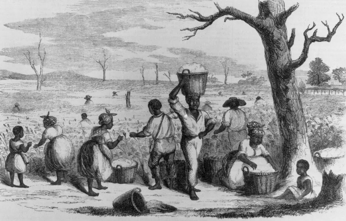 Picking Cotton. Ballou's Pictorial (Boston, Jan. 23, 1858),